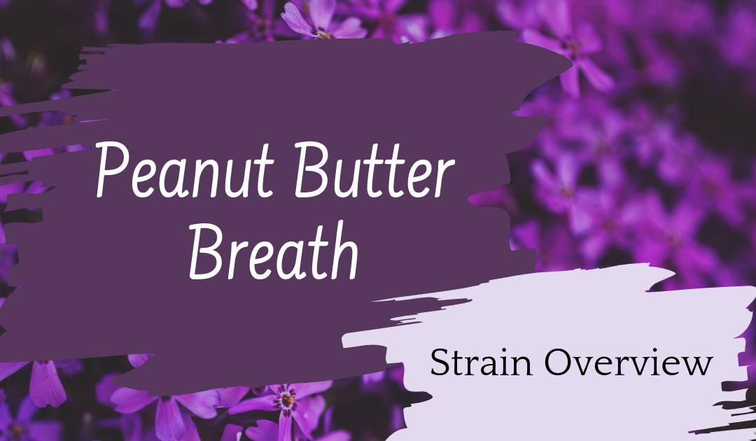 Peanut Butter Breath Overview