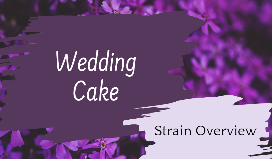 Wedding Cake Overview
