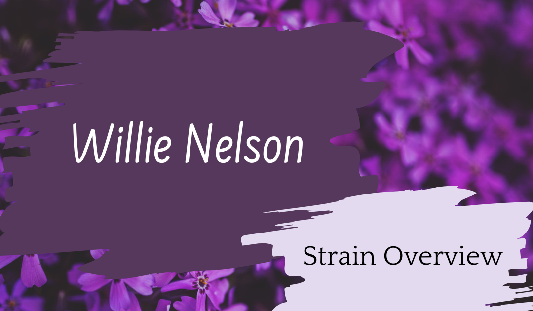 Willie Nelson Overview